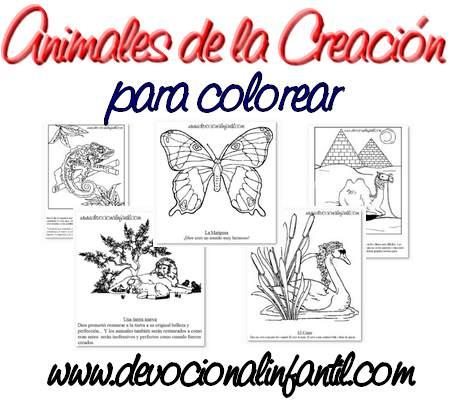 Animales de la Creación – Dibujos para Colorear | Devocional ...