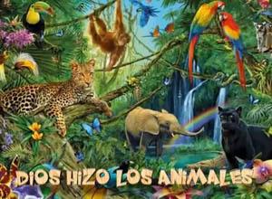 Dios hizo los animales