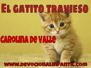 gatito_travieso[1]