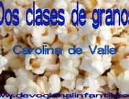 Dos clases de granos – Carolina de Valle – Devocional Infantil