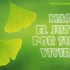 Mas el justo – Wallpaper
